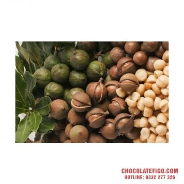 Giảm cân tuyệt vời với Socola đen Figo và Hạt Macca- Tự hào Chocolate Việt Nam