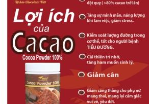 Hạt cacao nguyên chất đã rang Figo 500g