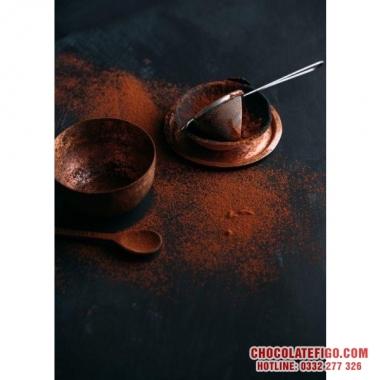 Nhà sản xuất Bột cacao sỉ lẻ - Bột cacao sản xuất từ Hạt cacao Bến Tre - Giao hàng toàn quốc